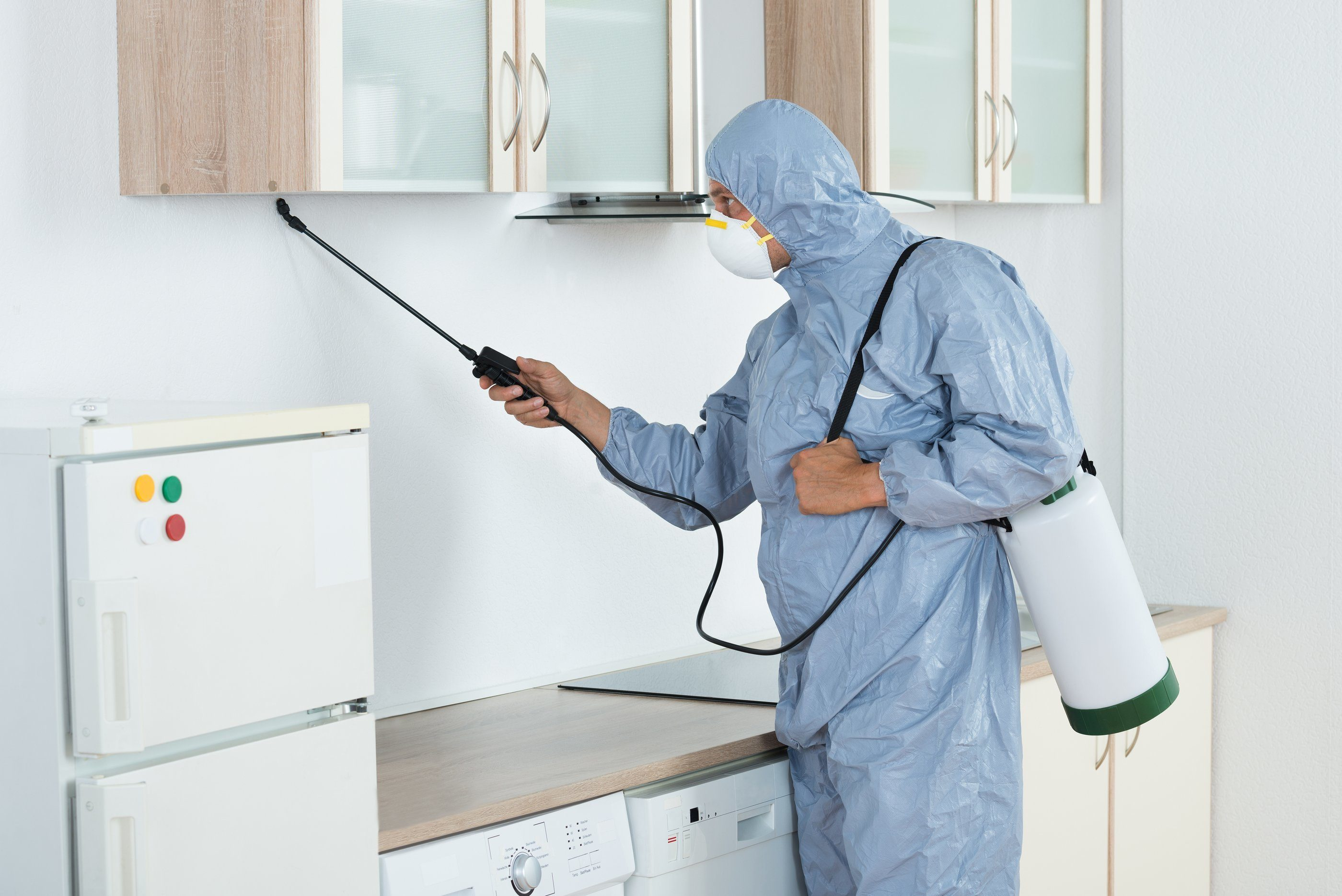 Home Pest Exterminator services